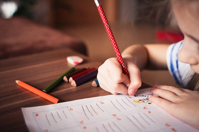 子供の知的好奇心をさらに伸ばす方法